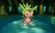 A better look at Pokemon X & Y's starters and legendaries photo