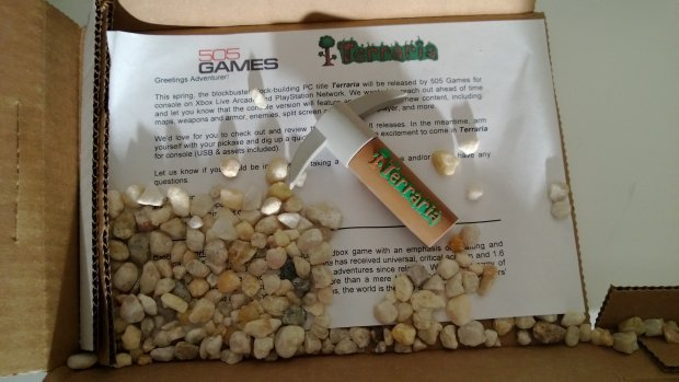 Terraria celebrates XBLA/PSN release by sending pebbles photo