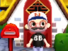 Animal Crossing: New Leaf photo