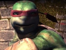 Teenage Mutant Ninja Turt photo