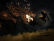 German PC listing of Dragon's Dogma: Dark Arisen quashed photo