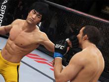 UFC photo