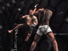 UFC demo photo