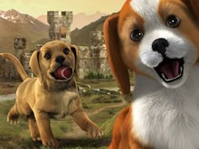 PS VITA PETS: GET HYPE! photo