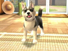 PS VITA PETS IS SO FETCH photo