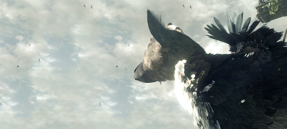 Last Guardian cancelled? photo