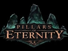 Pillars of Eternity Beta photo