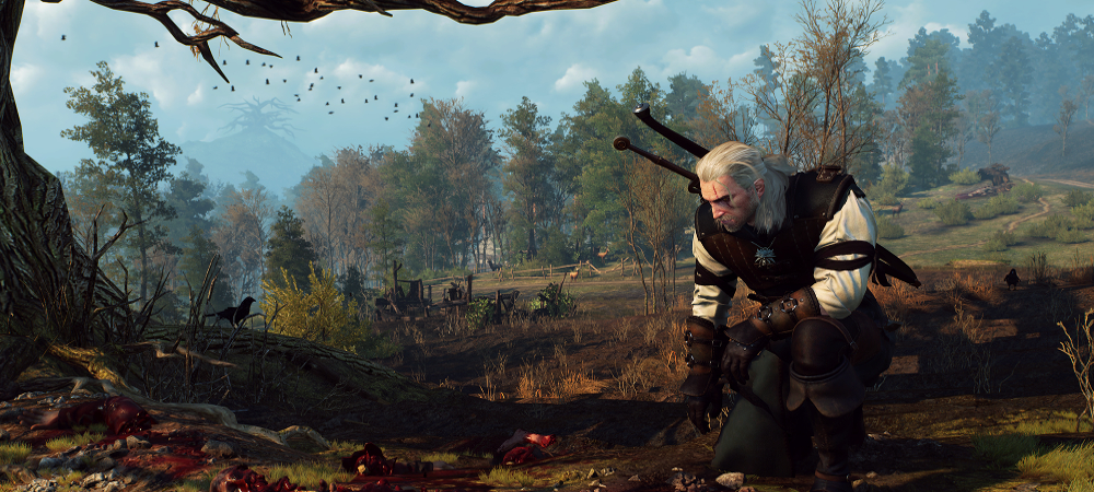 The Witcher 3: Wild Hunt photo