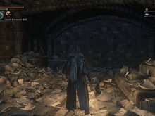 Best Bloodborne room photo