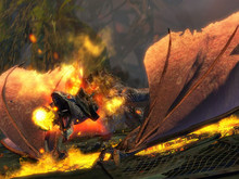 Guild Wars 2 beta photo