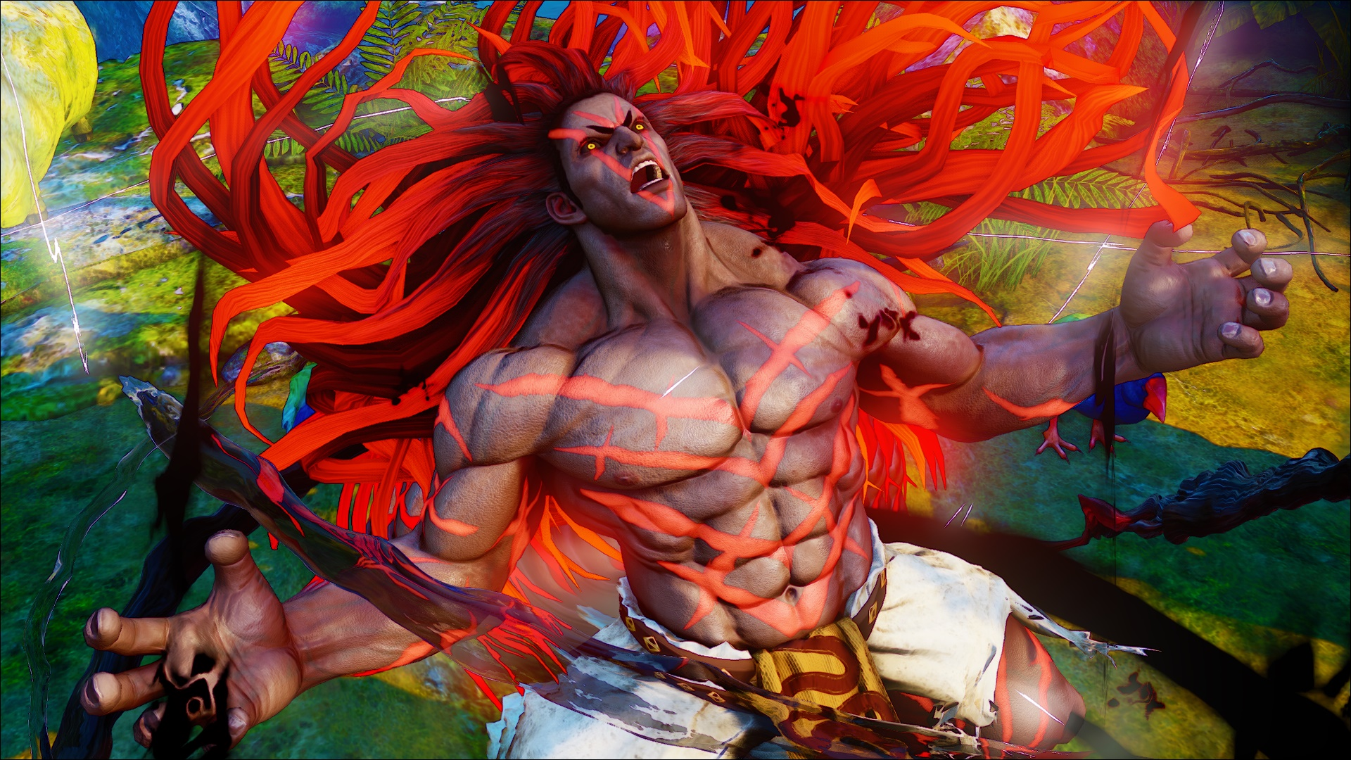 Street Fighter V photo