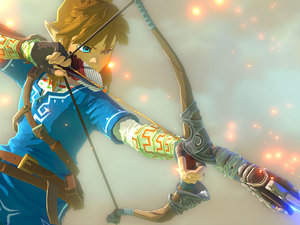 Zelda U photo
