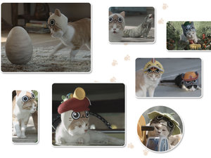 MonHun cats photo