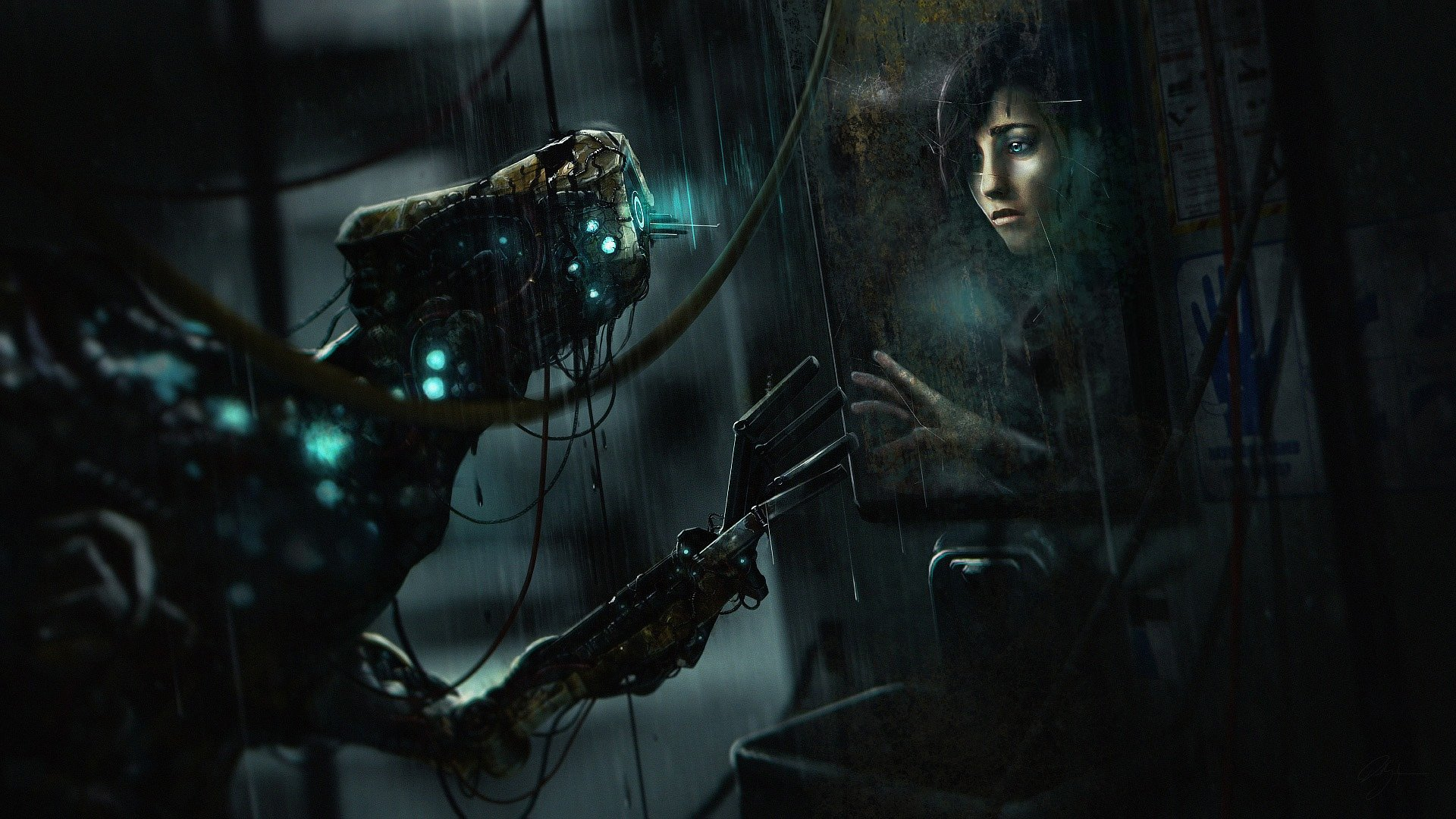 SOMA review photo