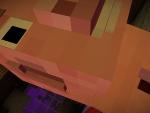 Minecraft screenshots photo