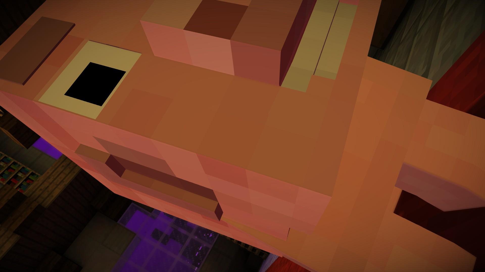 Minecraft screenshots photo