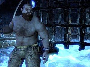 Elder Scrolls Online photo