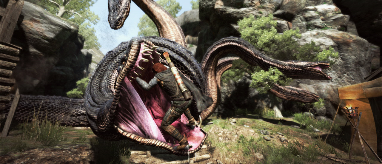 Dragon's Dogma photo