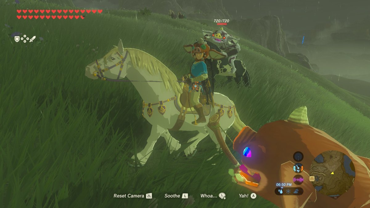 One patient Zelda: Breath of the Wild player escorted a