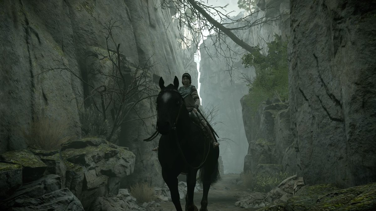 Sony is holding a Shadow of the Colossus launch stream screenshot