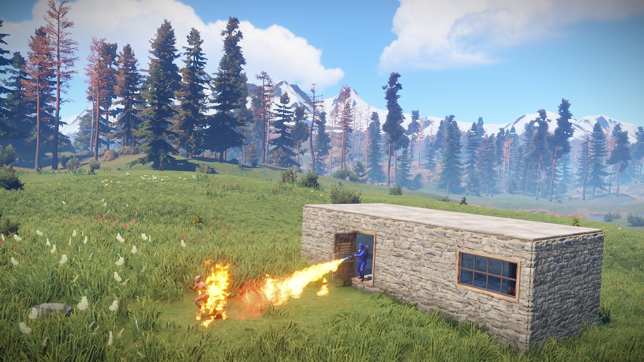 Review Rust