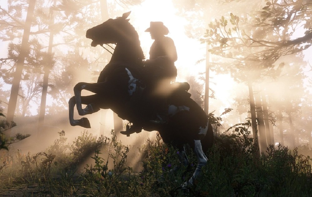 What do you think of Red Dead Redemption 2's wild wild west so far? screenshot