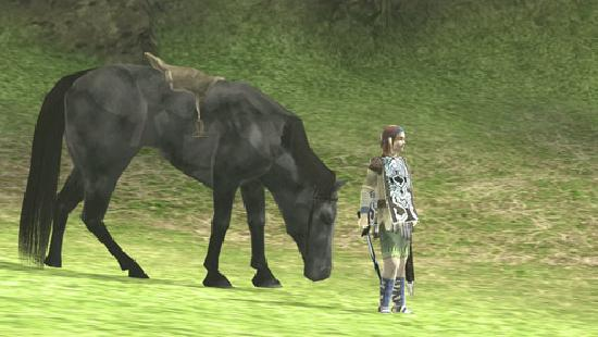 Shadow of the Colossus Agro