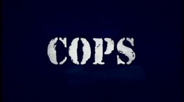 COPS television show now has a game  screenshot