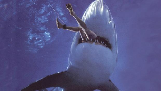 Нападения акул в Египте начали влиять на российский туристический рынок...