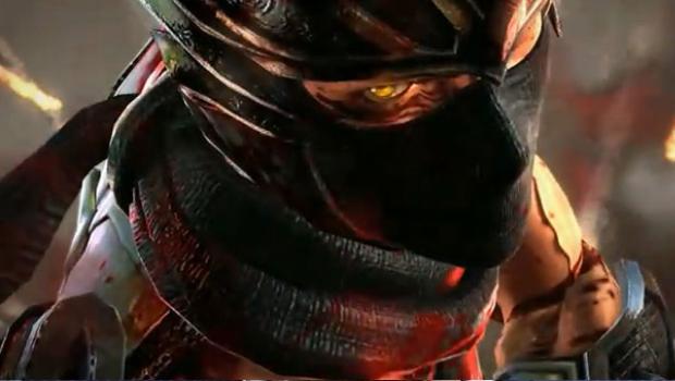 Ninja Gaiden 3 Online Passes Not Working Update
