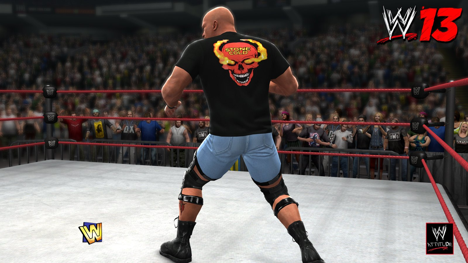 download wwe 13 pc game iso