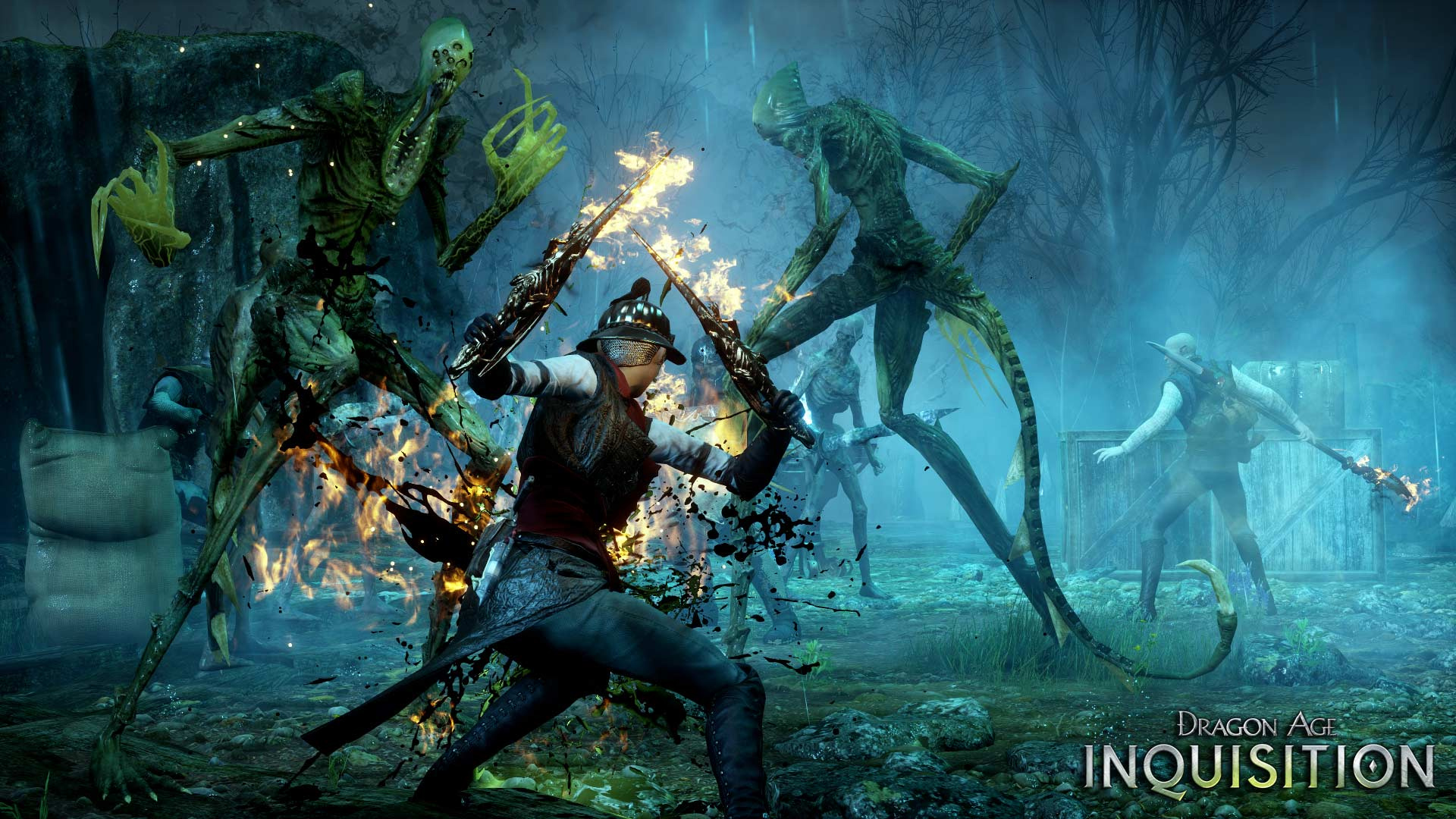 Dragon Age: Inquisition Game of the Year Edition | Dragon ...