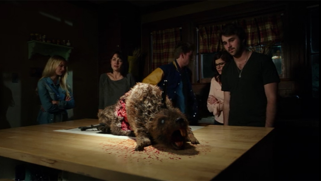 One of the aforementioned zombeavers.