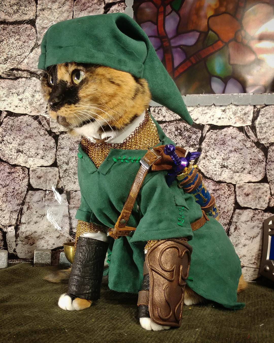 If you need to brighten up your day, Cat Link is the way ...
