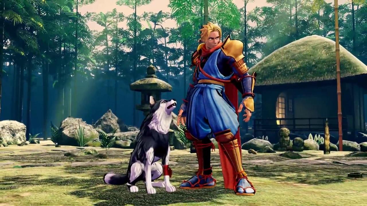 Europe is getting a pretty slick Samurai Shodown collector's edition screenshot