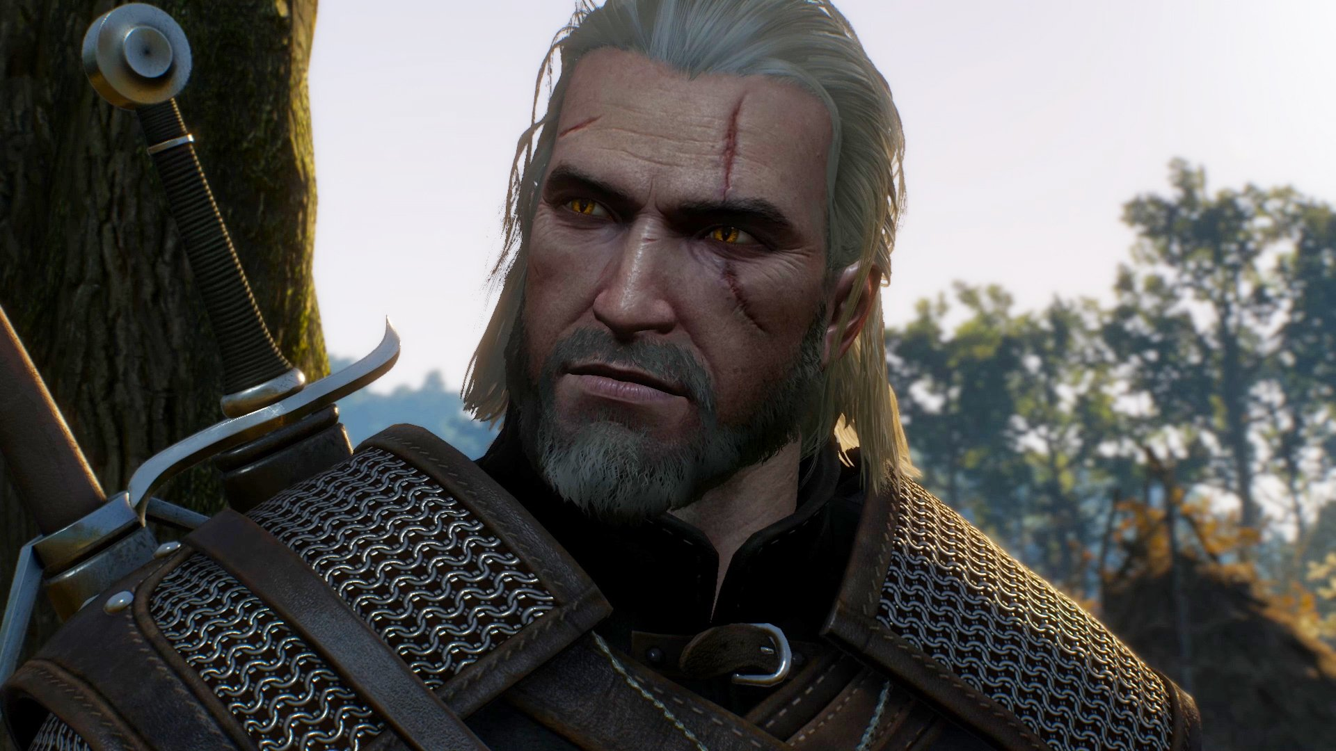 The Witcher 3 clocks in at 28.1GB on the Switch eShop screenshot