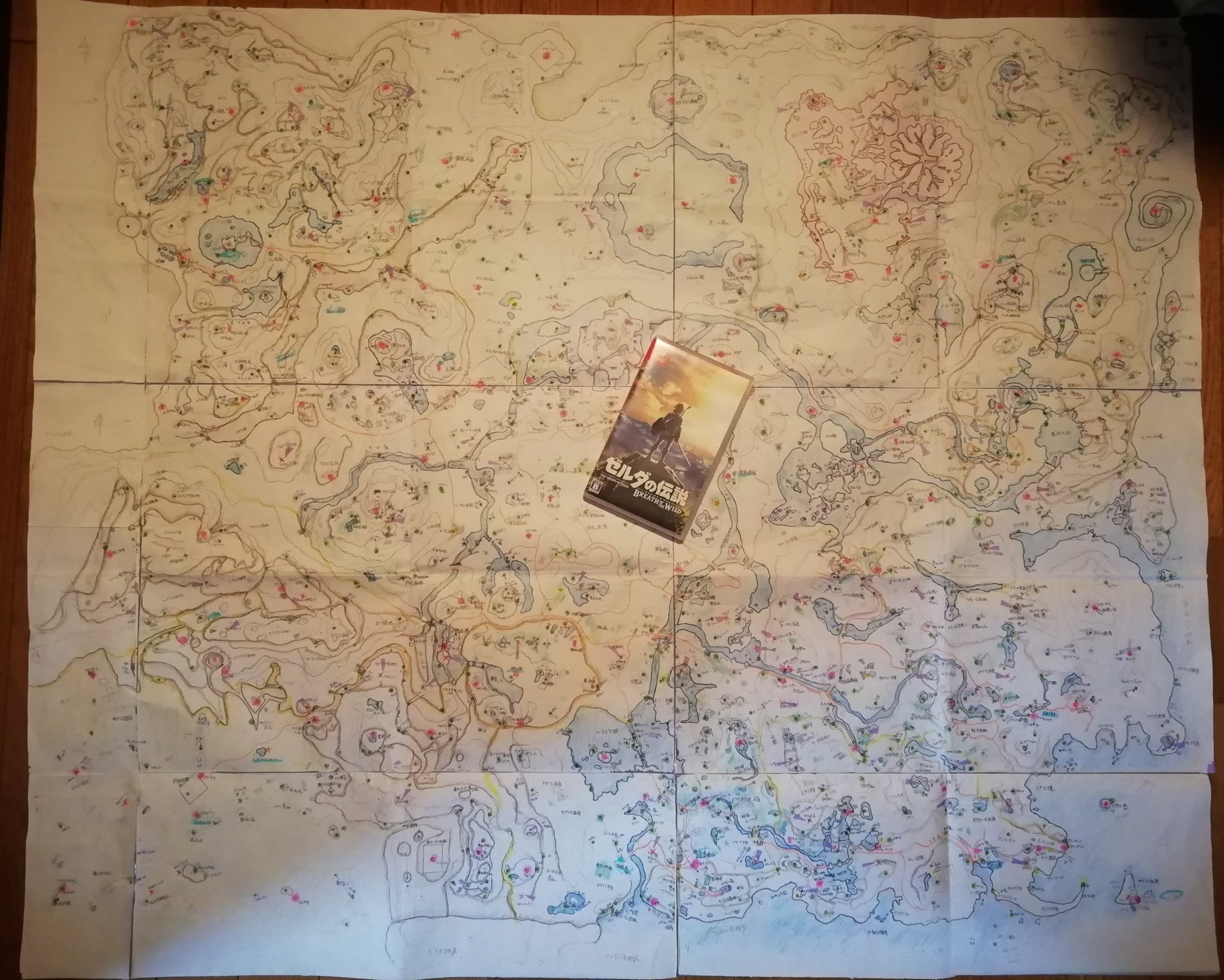 Mom of the year made one Zelda: Breath of the Wild fan this incredible custom map