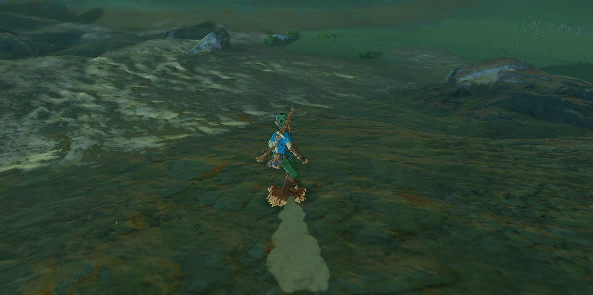 This Zelda: Breath of the Wild clip makes a good case for a Tony Hawk spinoff screenshot