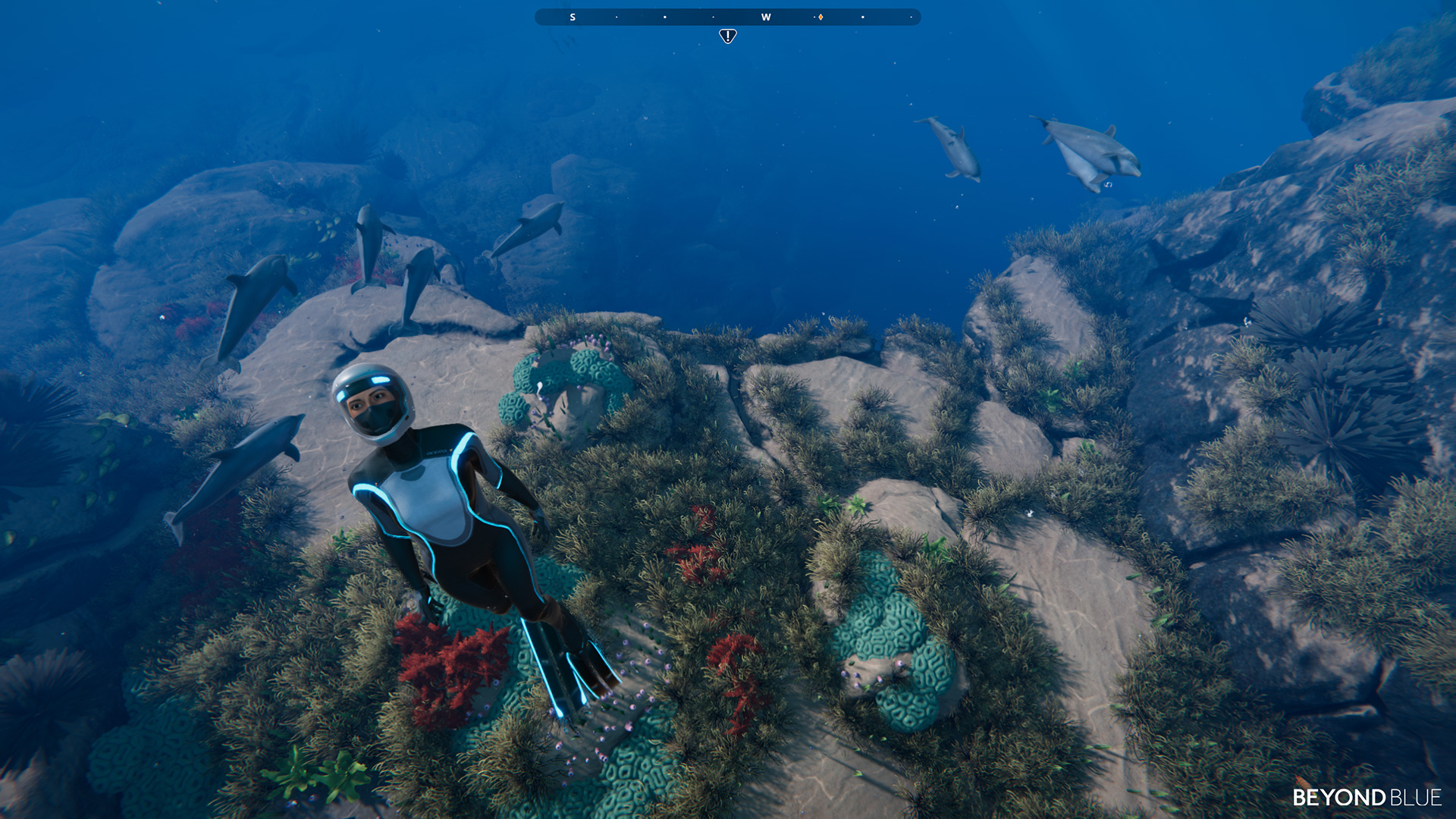 Underwater adventure Beyond Blue coming to PC, PS4, and Xbox One in June screenshot