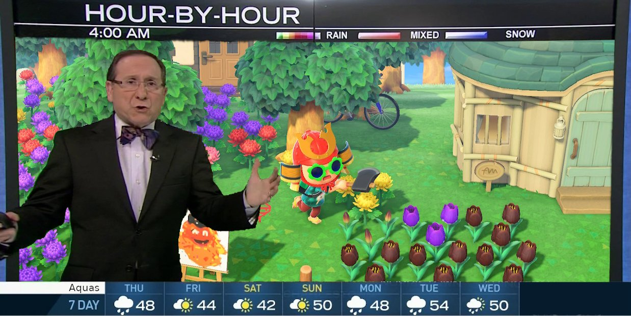 Learn your Animal Crossing island's weather pattern with this cool website screenshot