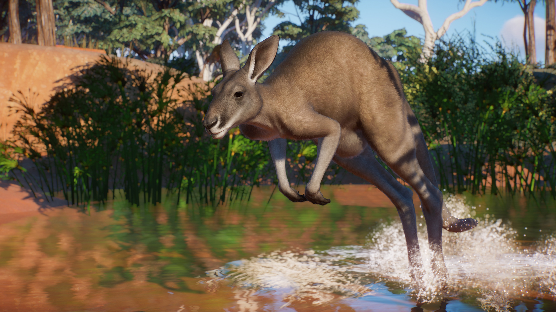 Planet Zoo is getting an Australia Pack and a free update on August 25 screenshot