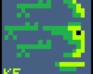 Kwamouflage avatar