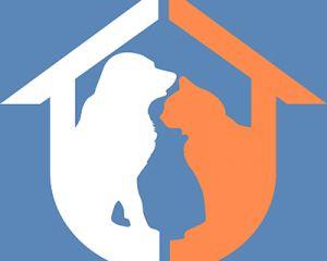 shelterlaunch avatar