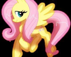 Cinderquill avatar