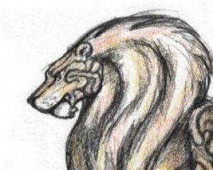 Daniel Raynor avatar