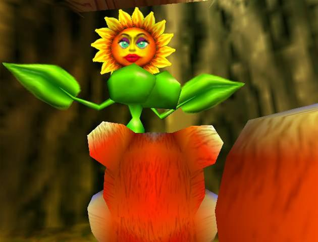 Conker and Sunflower