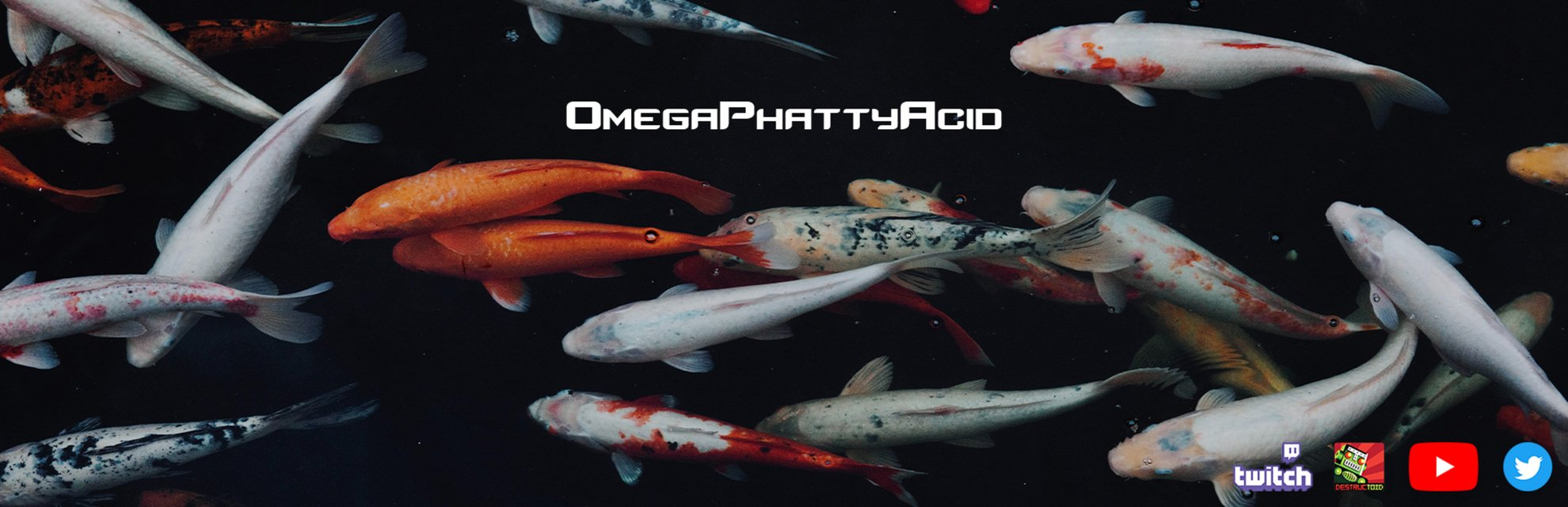OmegaPhattyAcid blog header photo