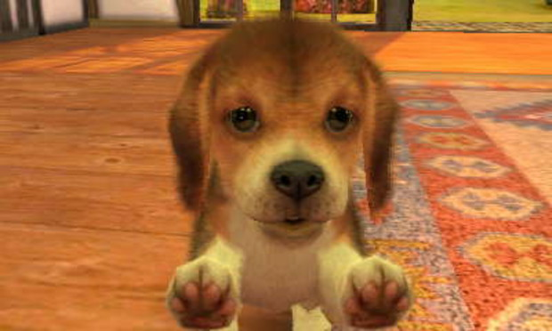 how to get money on nintendogs