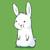 bunnyrabbit2